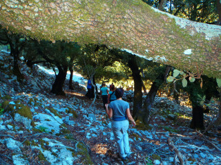 071112-cc-hike-in-the-mountains-of-crete