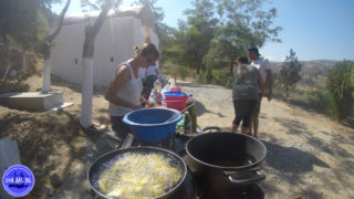cooking-lessons-in-greece-76