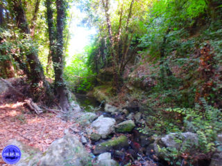 walking-and-hiking-holidays-in-crete-14