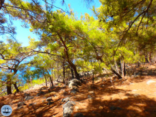 active-combination-holiday-greece