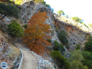 hiking-in-crete-and-holiday-201