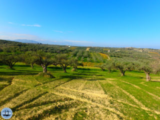 walks-and-hikes-in-crete-101