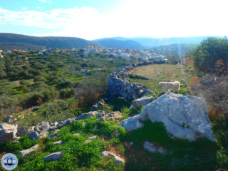 walks-and-hikes-in-greece